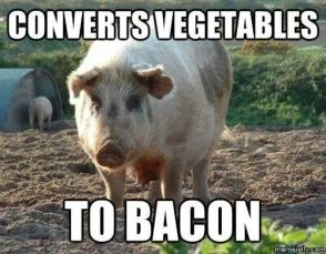 Converts vegetables to bacon meme