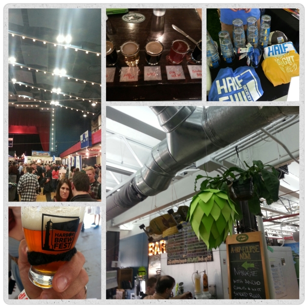 Collage of Beer Festivals