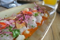 Hamachi Tiradito at Paloma in Stamford, CT