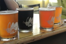 Flight of beer at Firefly Hollow in Bristol