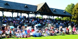 Greenwich Polo Club Grandstand (picture from Greenwich Polo Club)